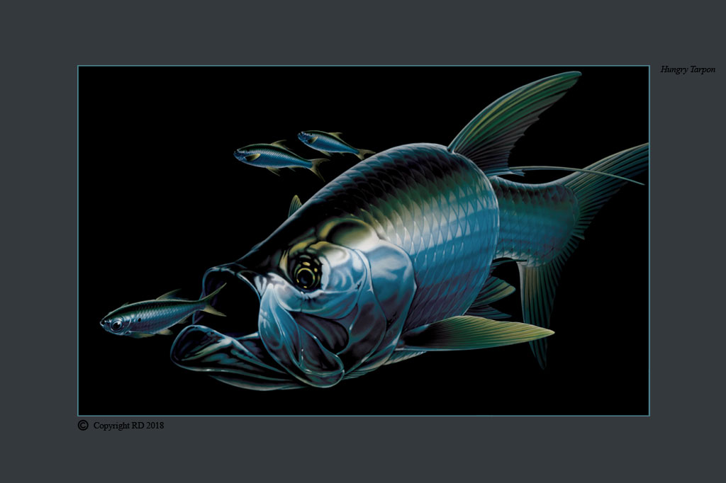 Hungry Tarpon - Giclees - Artist - Ray Domingo - Gulfport, FL